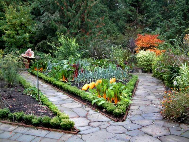 Edible Garden Inspiration | Honeysuckle Life